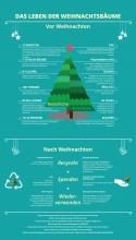 Infografik zu Weihnachtsbäumen