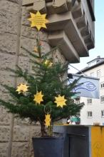Mehrwegweihnachtsbaum Aktion